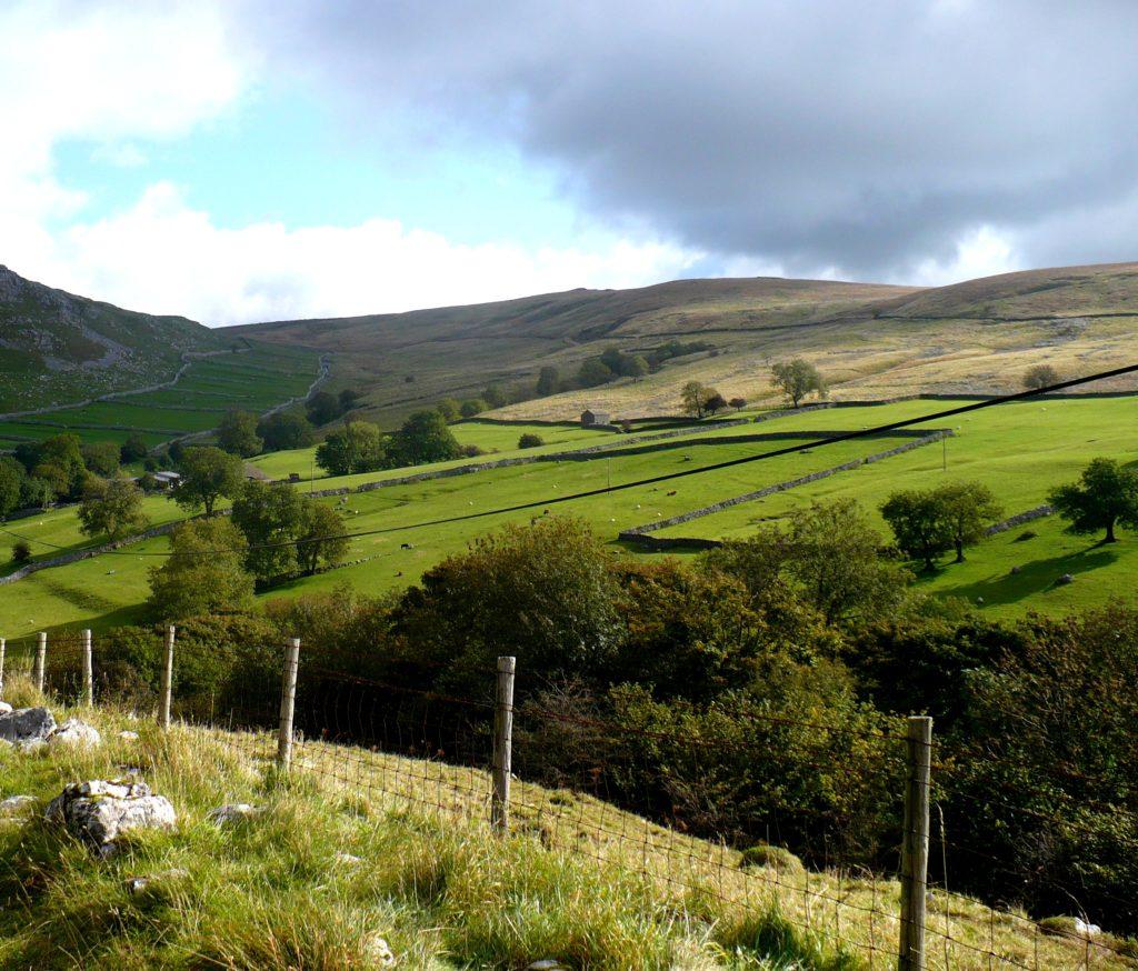 Pole v Yorkshire Dales - cestopis Severovýchodní Anglie