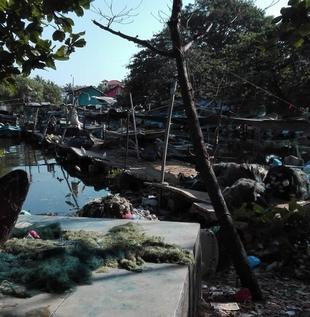Rybí trh Negombo, cestopis Srí Lanka